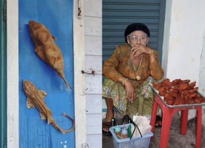 A street vendor selling fried chicken - doesn't she look grand?