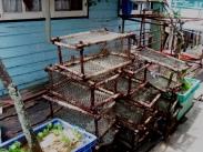 Crab nets, I suppose?