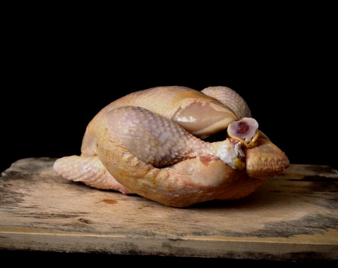 Chicken rev